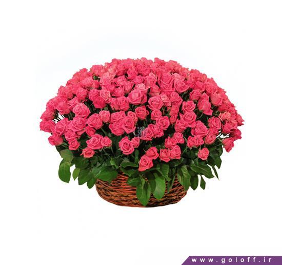 سفارش سبد گل - سبد گل رز استلا - Estela | گل آف