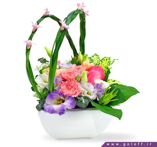 سبد گل زیبا - سبد گل تونخا - tonkha | گل آف