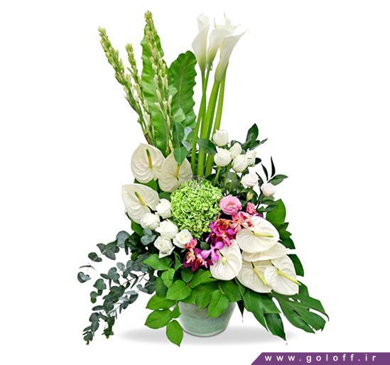 گل زیبا - سبد گل پرتک - Pertak | گل آف