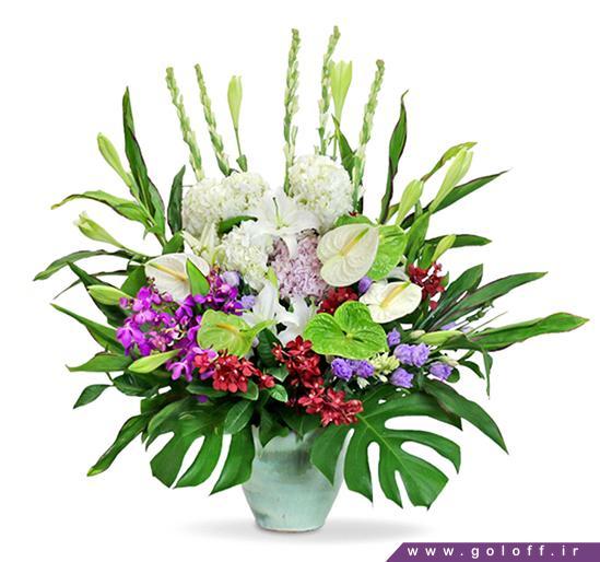 خرید گل زیبا - سبد گل لادیک - Ladik | گل آف