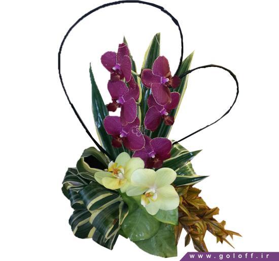 خرید اینترنتی گل طبیعی - سبد گل اردونُوا - Ordonówa | گل آف