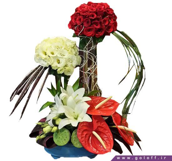 سبد گل تولد - سبد گل دانوتا - Danuta | گل آف