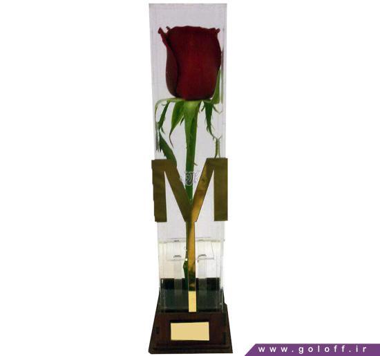 مدل جعبه گل - جعبه گل گوستاوو - Gustawo | گل آف