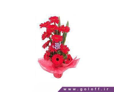 خرید اینترنتی سبد گل - سبد گل ژربرا لوسیتا - Lucita | گل آف