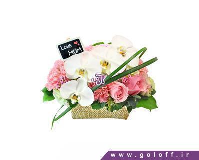 سبد گل ارکیده - سبد گل واریل - Variel | گل آف