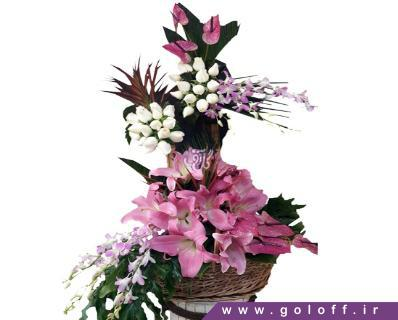سبد گل زیبا - سبد گل آلکسی - Aleksy | گل آف