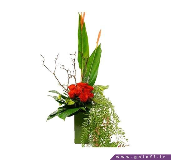 مدل های دسته گل - دسته گل میرامیچی - Miramichi | گل آف