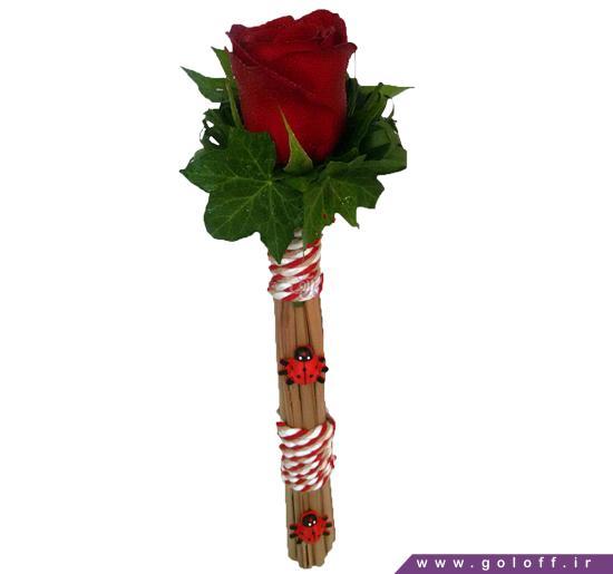 عکس عاشقانه گل رز - گل تک شاخه کریستینا - Krystyna | گل آف