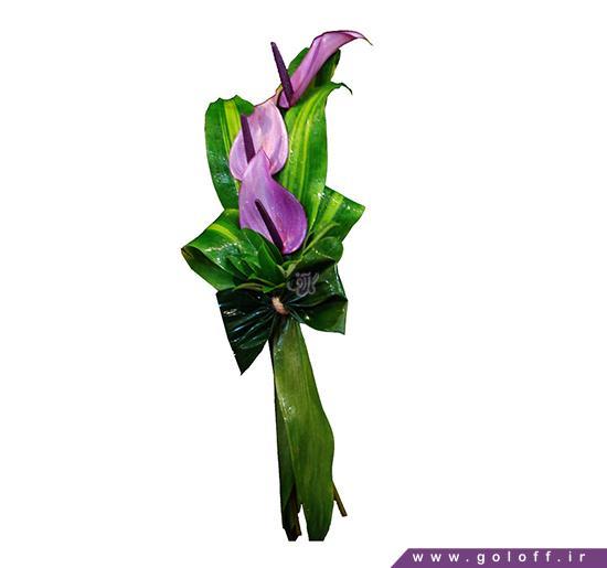 فروش گل اینترنتی - گل تک شاخه رومِک - Romek | گل آف