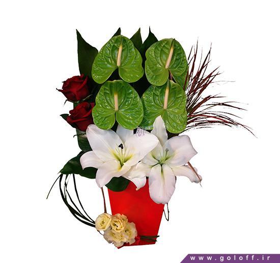 گل جعبه ای - جعبه گل ویکتا - Wikta | گل آف