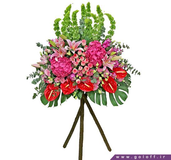 انواع تاج گل - تاج گل کلمنته - Clemente | گل آف